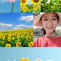 Nguyễn Như