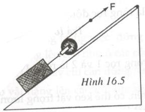 Giải bài tập SBT Vật lý lớp 6 bài 16: Ròng rọc